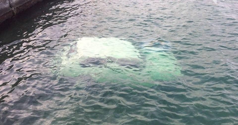на пляже одессы в море нашли труп в автомобиле