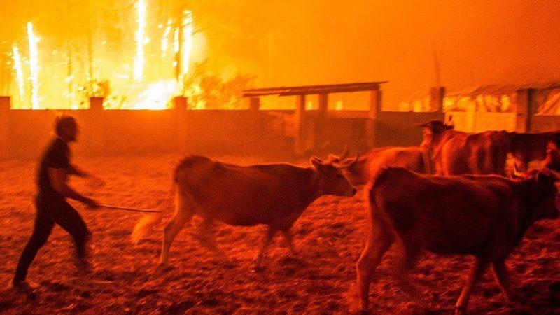 пожары в португалии и испании