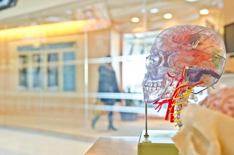 сбой в работе мозга