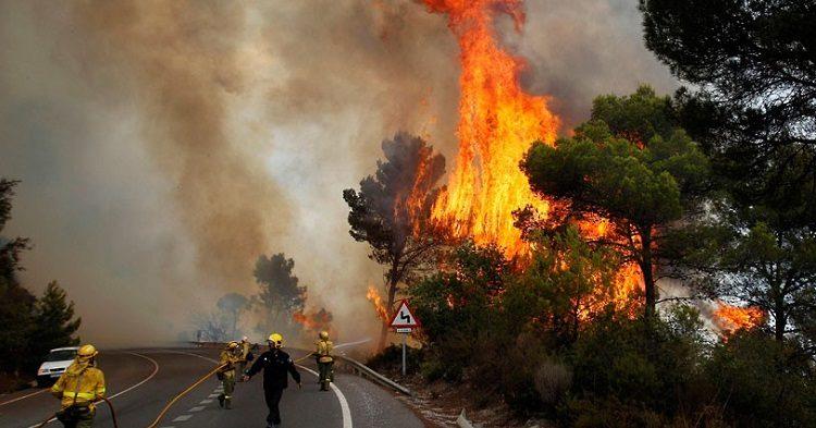 лесные пожары в Португалии и Испании