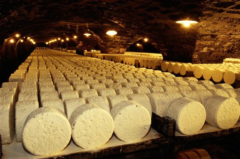 как готовят сыр с плесенью?