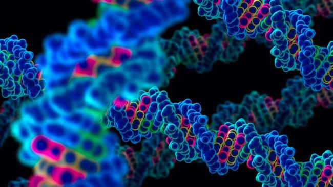генная терапия