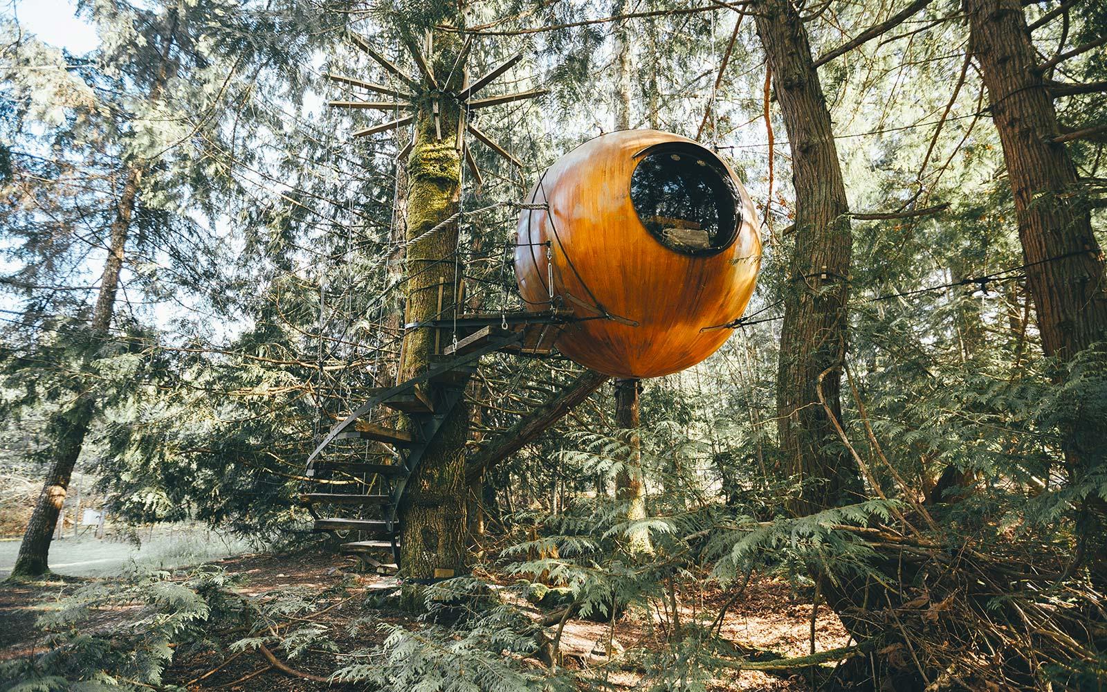 уникальный отель в лесу Ванкувера