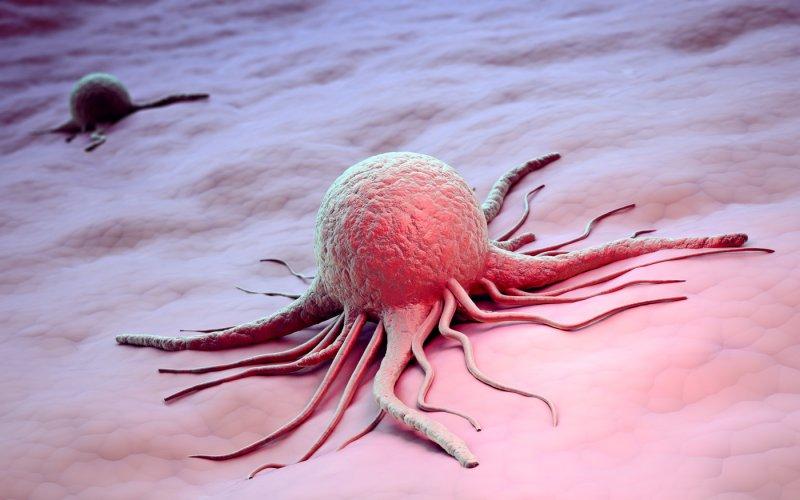 Глава Минздрава рассказала, как защитить себя от рака