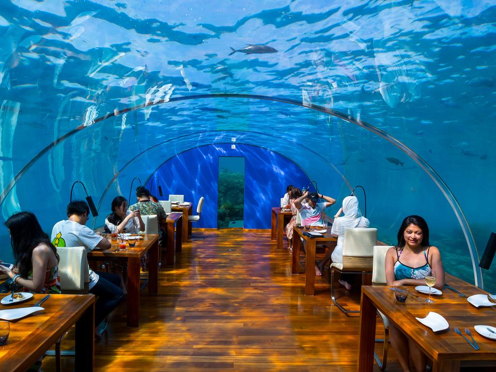 Ithaa Undersea Restaurant — подводная жемчужина Мальдив