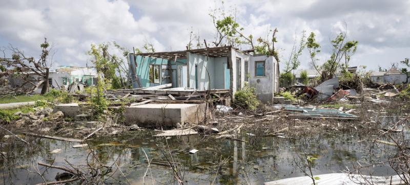 карантин не зміг зупинити кліматичну кризу