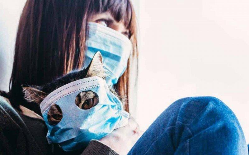 Вчені розробили маску, яка тестує на коронавірус