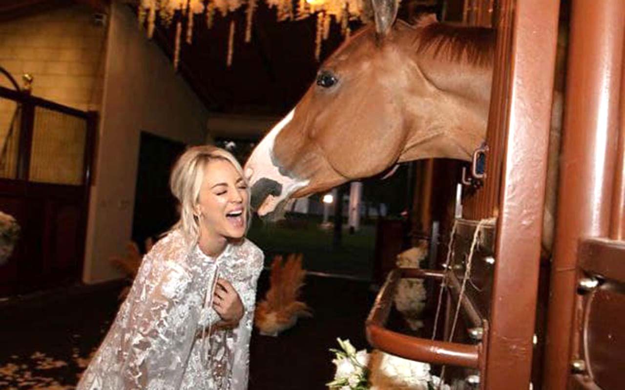 Star Kaley Cuoco Wants To Buy A Horse