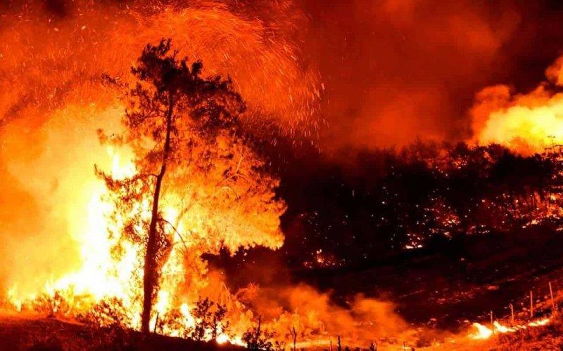 У Туреччині через пожежі евакуюють туристів з готелів
