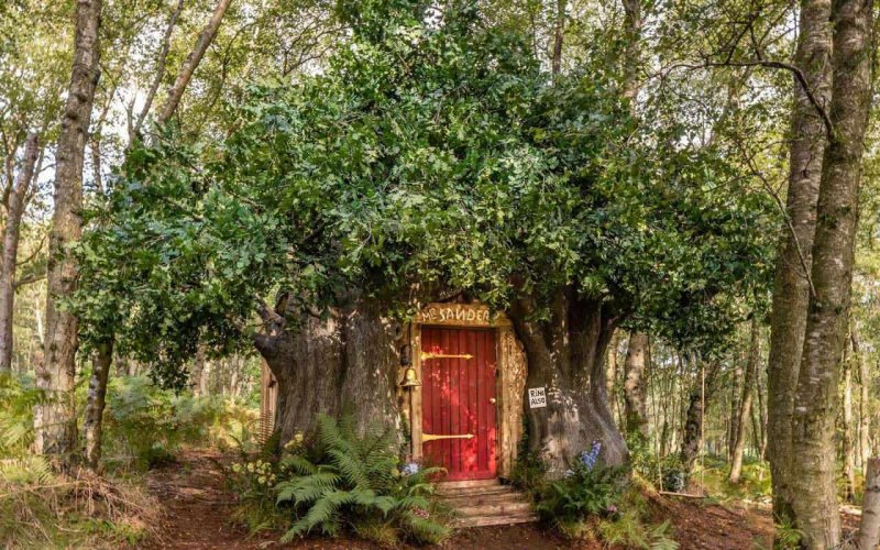 Winnie the Pooh's house can be rented on Airbnb